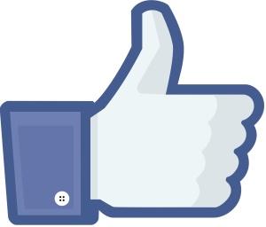 Facebook-pollicesu